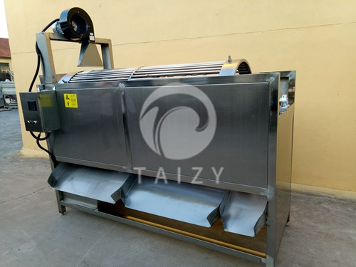 Fruit and vegetable grading production line2