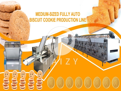 Full-automatic Biscuit Production Line OEM