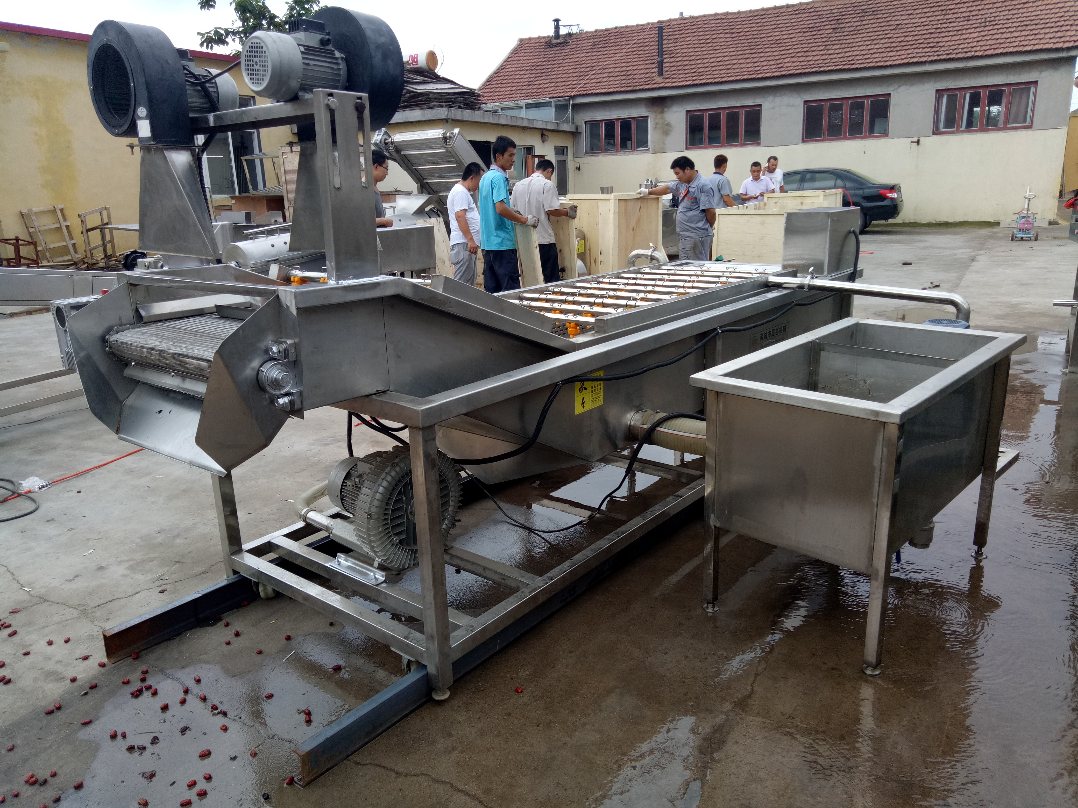 commercial fruit and vegetable cleaning machine
