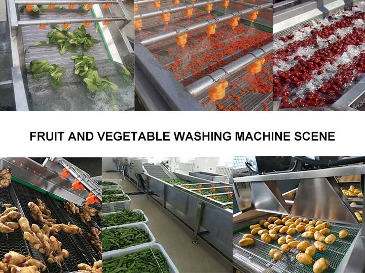 industrial fruit and vegetable washer machine application