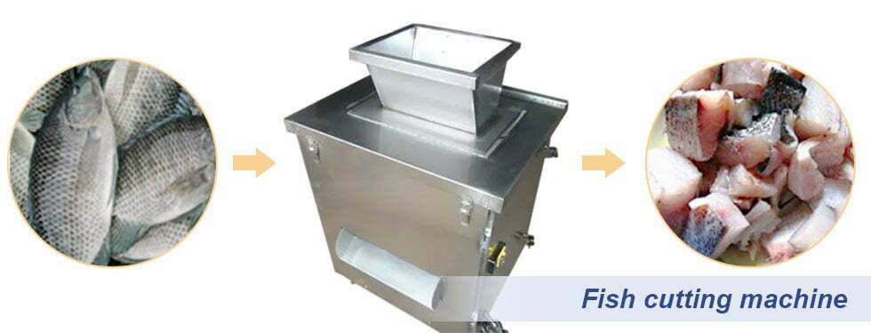 fish cutting machine process