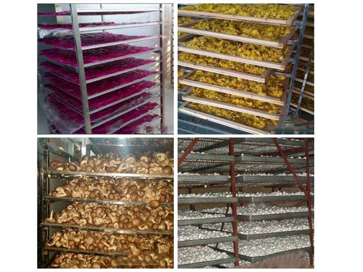 commercial food dehydrator machine application