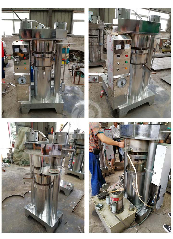oil press machine working