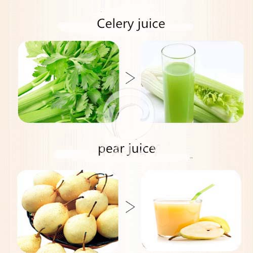 spiral juicer