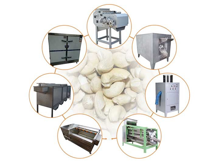 small scale cashew nut production line