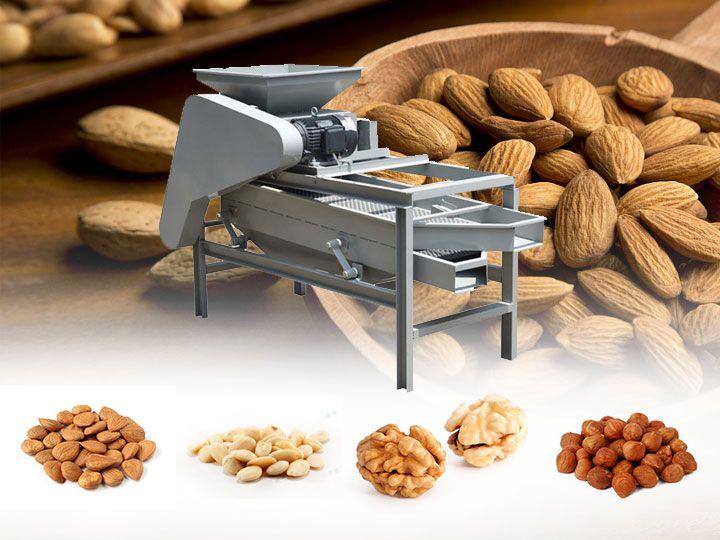 nut cracker / black walnut cracker / pecan cracker machine /
