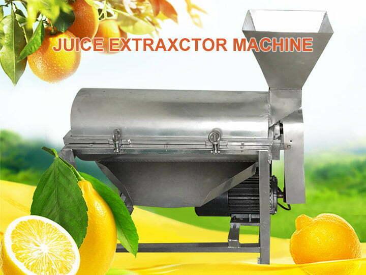 fruit pulper machine