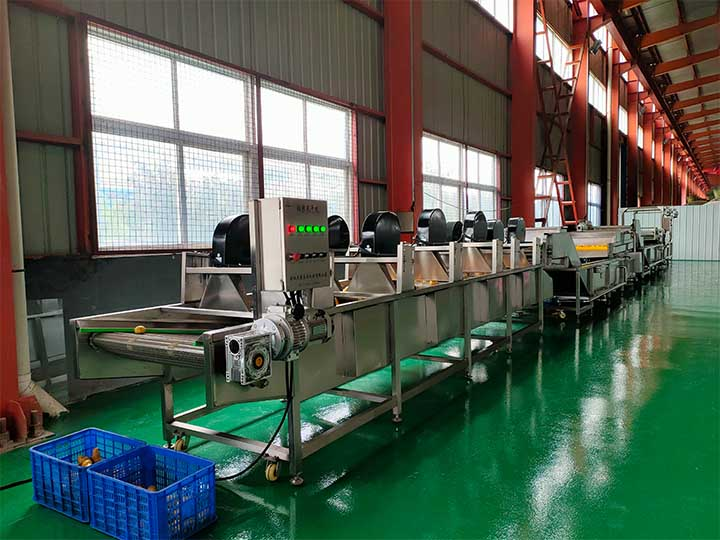 blueberry wash processing line