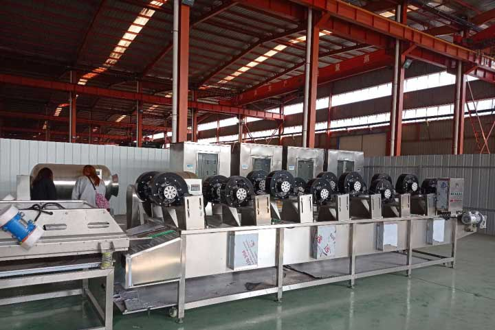 dates air drying machine
