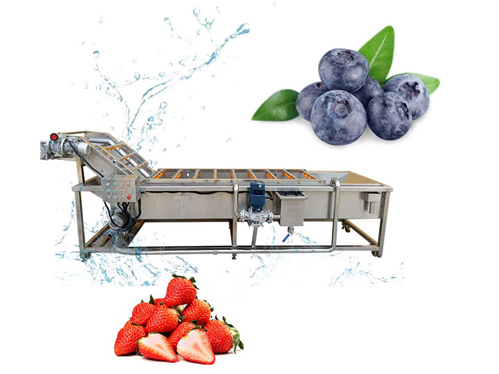 industrial strawberry&blueberry washing machine