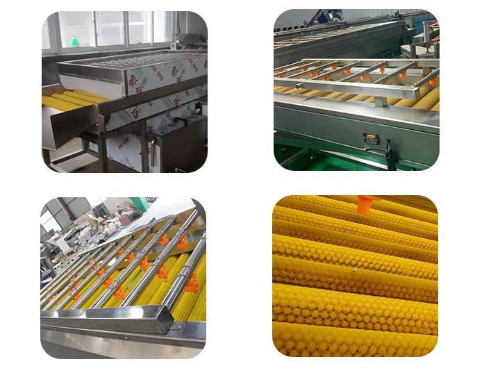 roller machine for cleaning dates