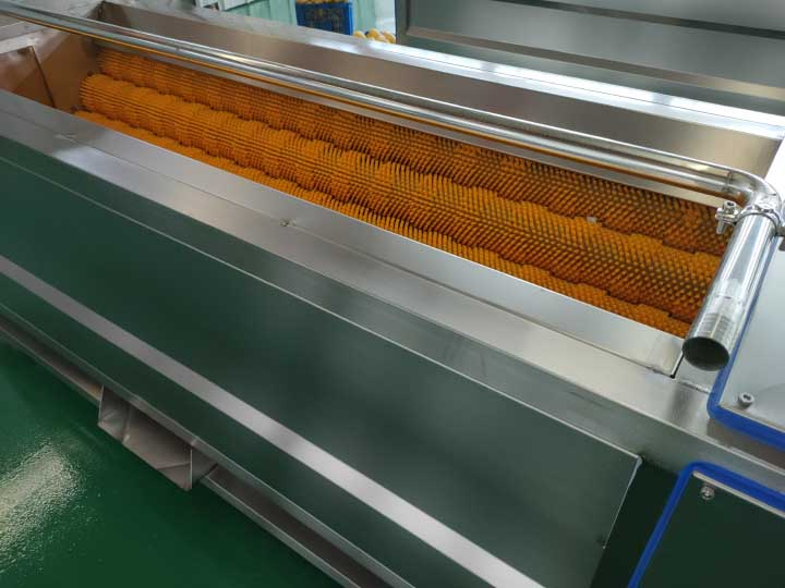 stainless steel carrot washing machine