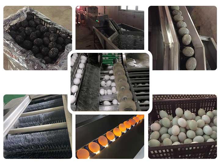 chicken duck egg cleaning machine steps