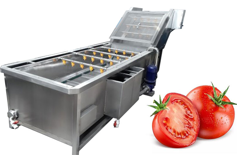 commercial tomato washing machine