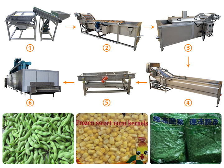 frozen peas processing line