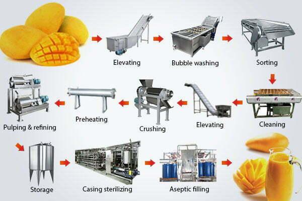 mango fruit juice production line