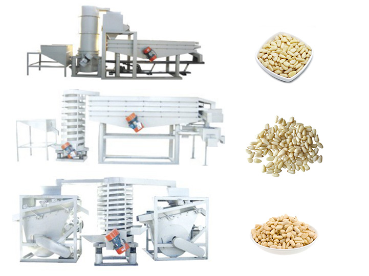 Lebanese pine nut shelling production line