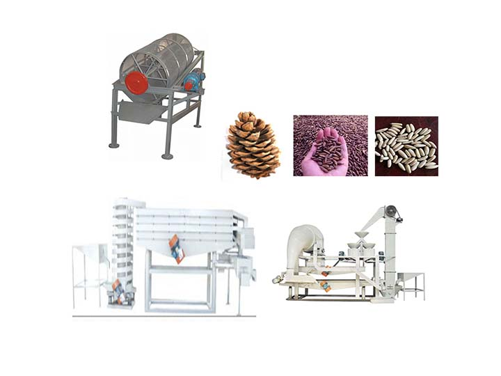 Pakistan pine nut processing flow chart