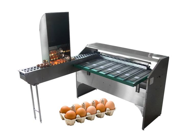 TZ-4000 small egg grading machine