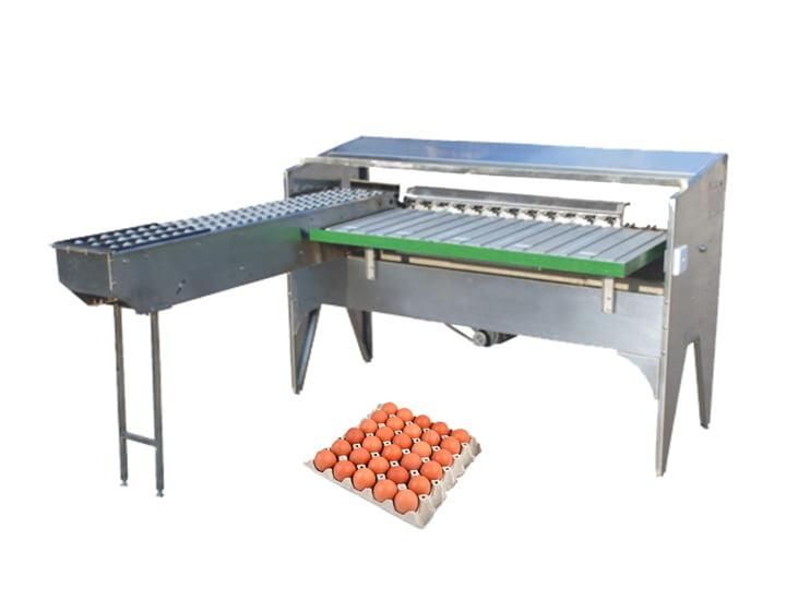 TZ-5400 automatic egg sorting machine