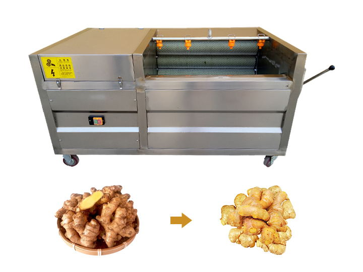 ginger cleaning and peeling machine