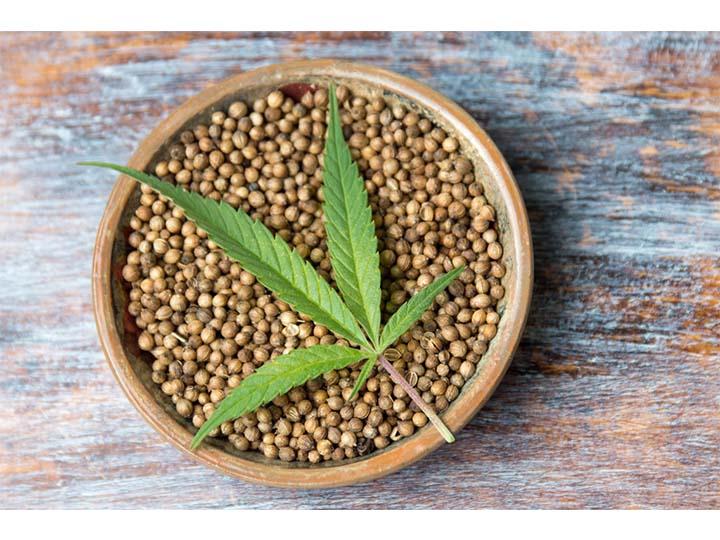 whole hemp seed