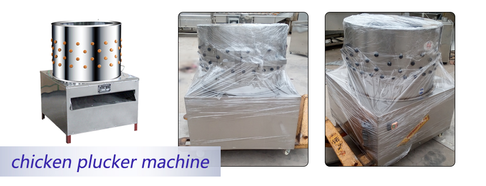 electric chicken de-feathering machine